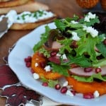 featured image of Roasted Butternut Squash Salad with Cranberry Vinaigrette Recipe
