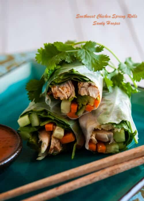 image grilled chicken spring rolls-