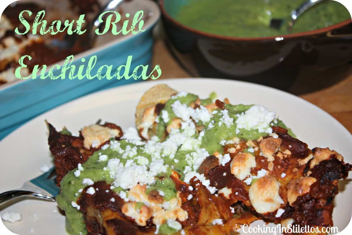 Short Rib Enchiladas Plus a Pasta Recipe Round-Up