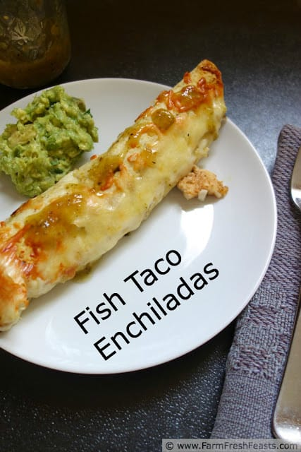 Fish Taco Enchiladas and Pasta Recipe Round-Up