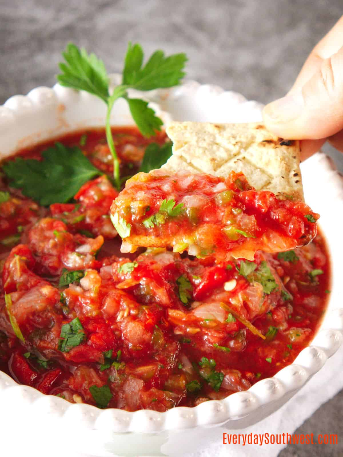 Homemade Restaurant Style Salsa in Your Air Fryer