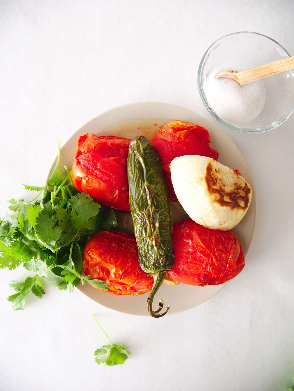 Restauant Style Salsa with Roasted Tomatoes