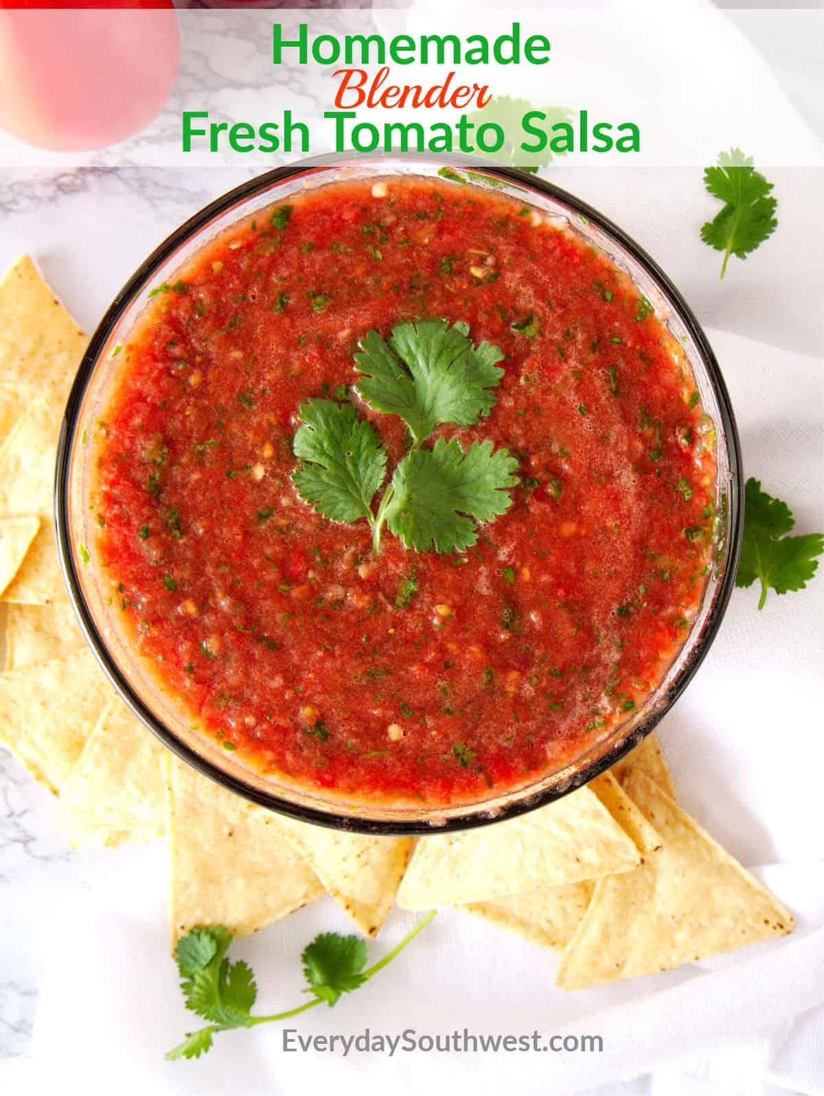 Homemade Fresh Tomato Salsa in Your Blender