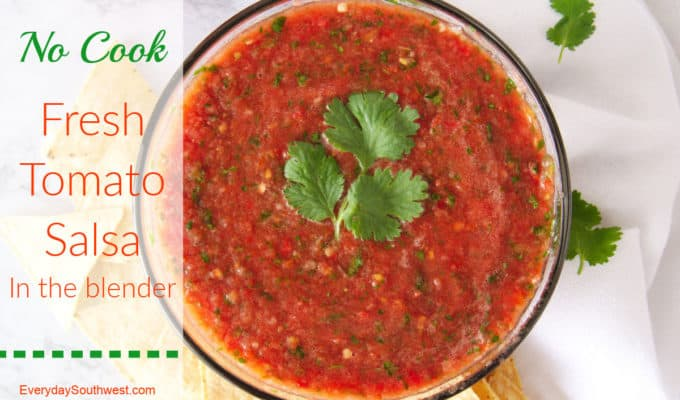 Easy Fresh Tomato Salsa in the Blender