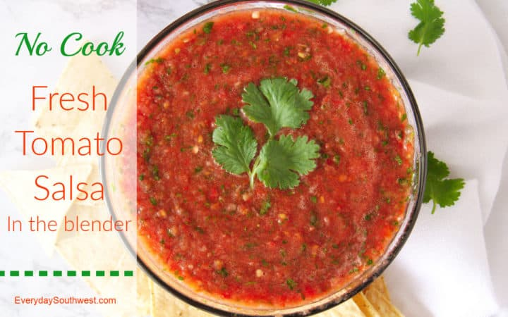 No Cook Fresh Tomato Salsa Recipe in the Blender